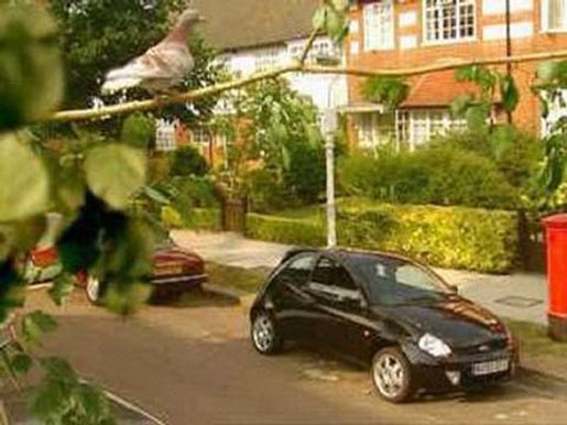 Ford Sportka Bird TV Ad