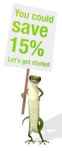 Geico Gecko poses on web site