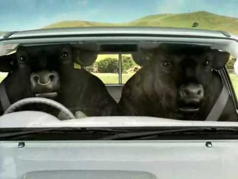 Toyota Hilux Bulls Hit TV Ad