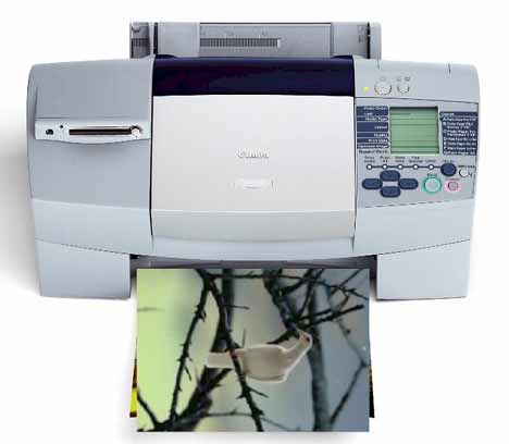 Canon S830D printer with dove photograph
