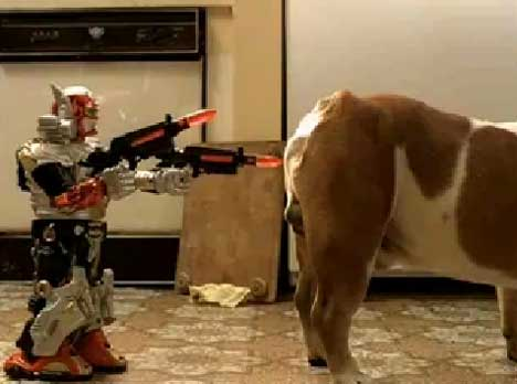 Robot approaches the dog in IKEA TV ad