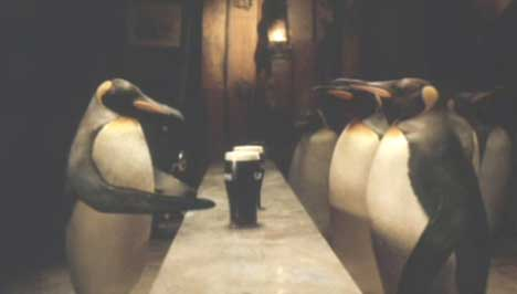 Penguins at the bar in Guinness TV ad