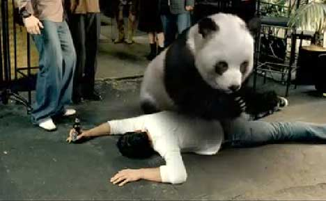 Panda in Tiger Beer ad