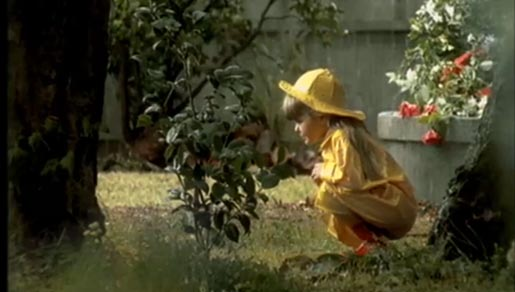 Ladybird Needs Help in NRMA TV Ad