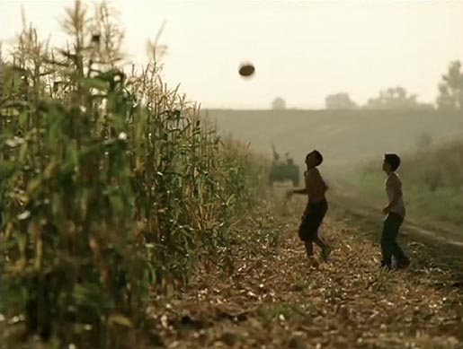 Boys play football in cane field