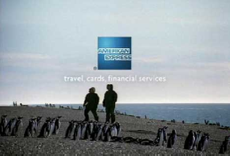 American Express Penguins