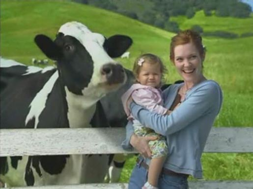 Cow poses with woman and child in Happy Cows commercial