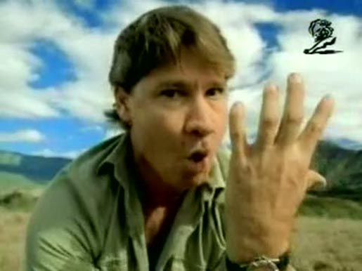 Steve Irwin holds a taipan in a Fedex tv commercial