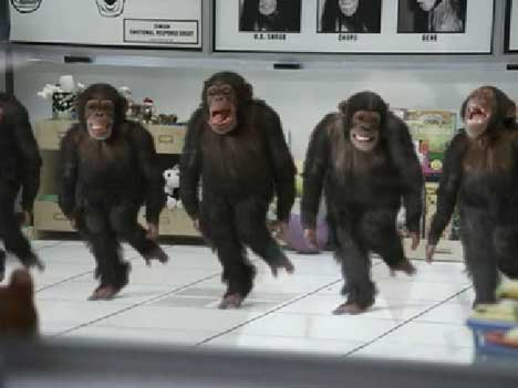Chimps in Arbys TV Ad