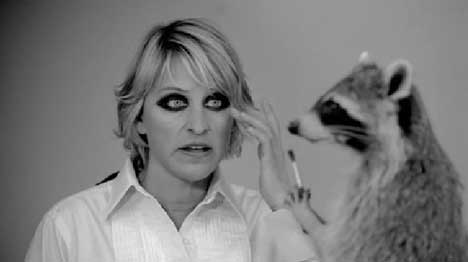 Image result for ellen degeneres raccoon