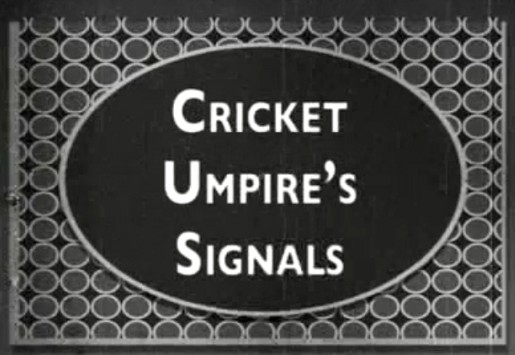 Cricket Umpire's Signals