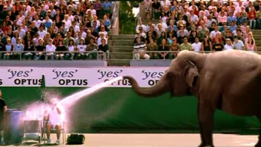 Optus Elephant at Australian Open