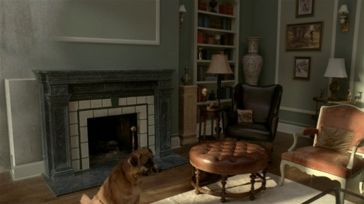 Dog in Audi A4 Living Room commercial