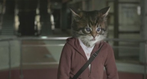 Ninja cat in Toyota Corolla advertisement