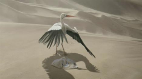 Stork shields baby from sun in desert