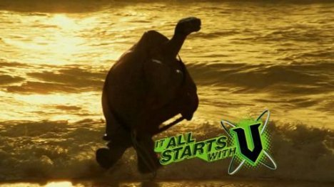 Tortoise runs at sunset in V TV ad