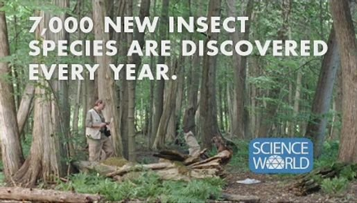 Science World Exciting Discovery television commercial