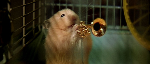 Drench Clever Hamster plays Trumpet