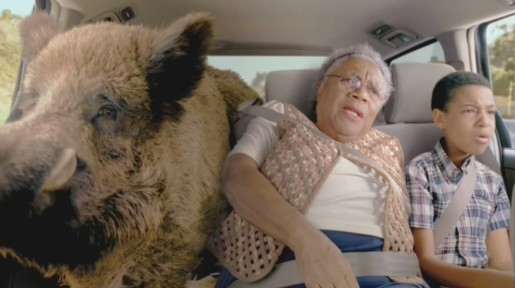 Pedigree Wild Pig in Crazy Pets spot
