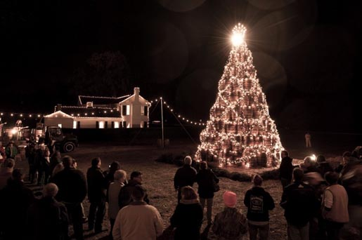 Jack Daniels Holiday Barrel Tree