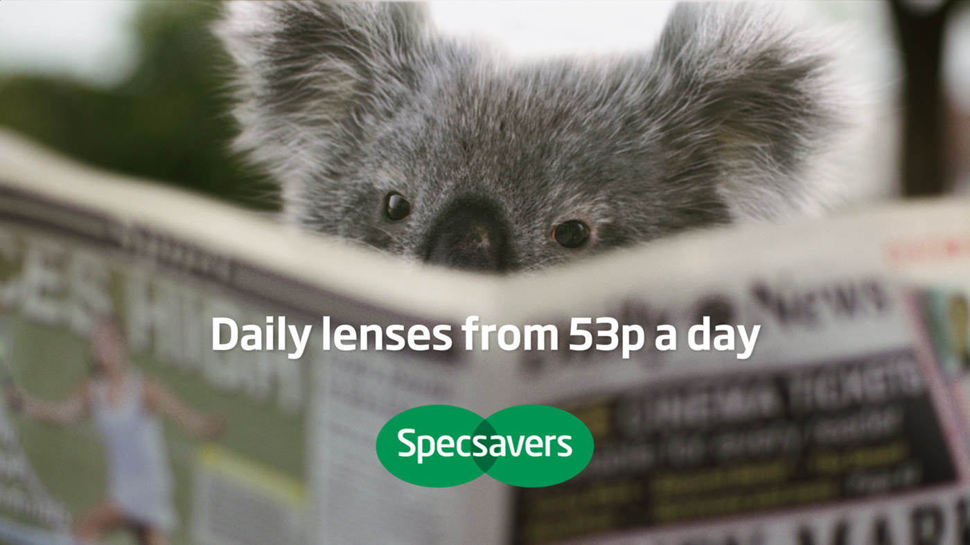 specsaver adverts ad of the day specsavers heads to wine country  uk archives page of the inspiration room specsavers koala