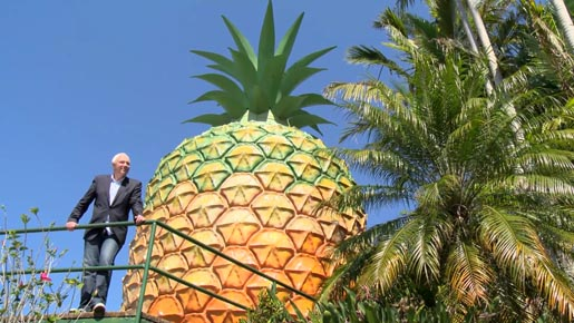Bob Parker and Big Pineapple