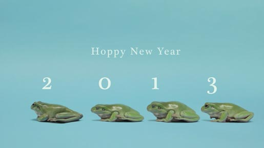 Hoppy New Year 2013