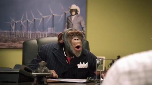 Careerbuilders Chimp Boss