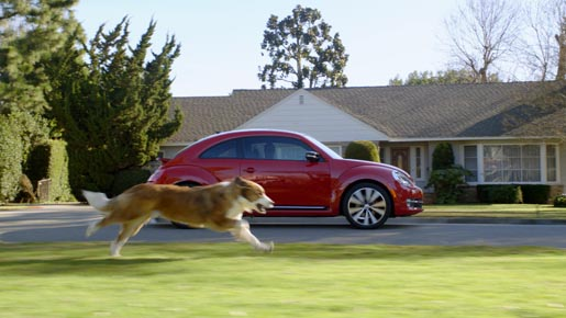 Volkswagen Dog Bolt chasing Beetle