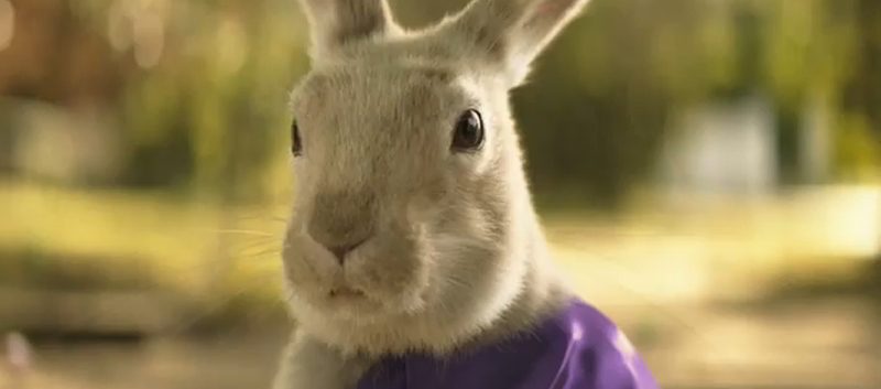 This Easter Hell Be Bunny Hopping Onto His Purple Bicycle And Delivering Sweet Treats To Homes Everywhere