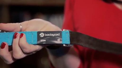 Barclaycard Pay Wag collar