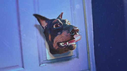 Audi Doberhuahua with pet door