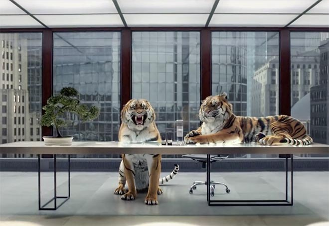 Virgin Atlantic The Idea - Tigers