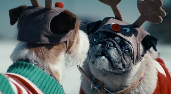 ASDA Christmas dogs