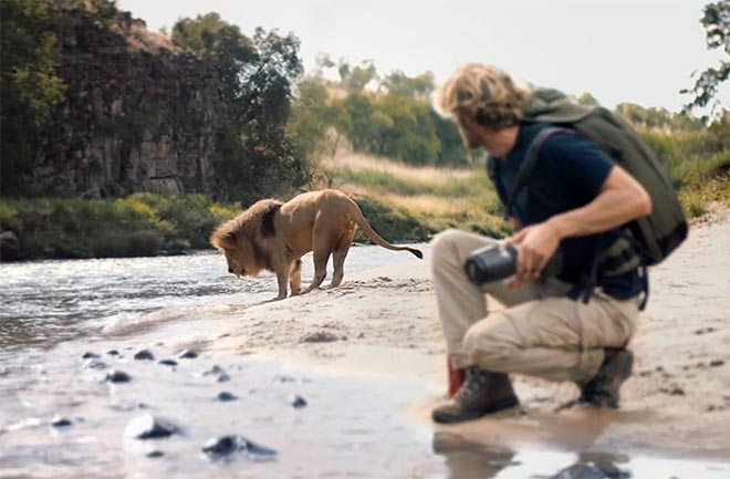 Photographer and Lion
