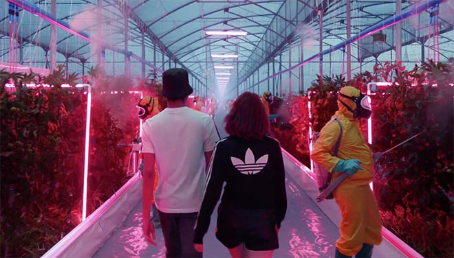 adidas Your Future image