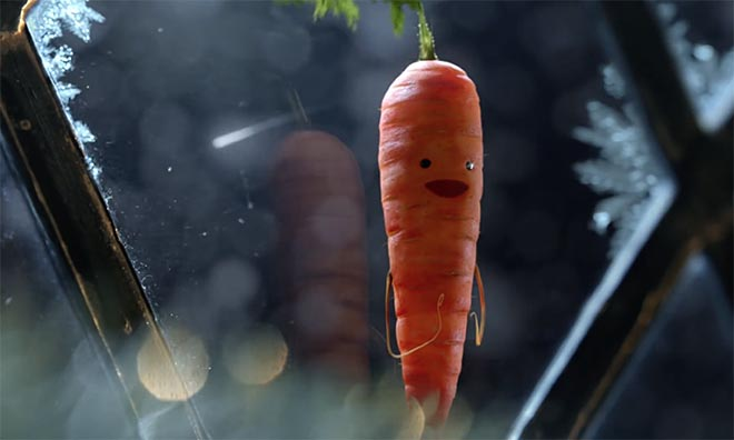 ALDI Christmas 2016 Kevin the Carrot
