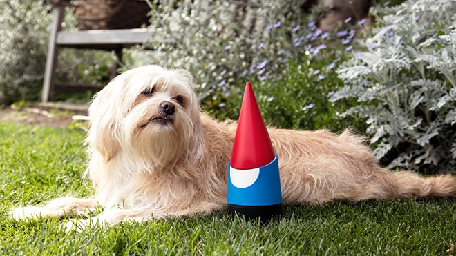 Google Gnome with dog