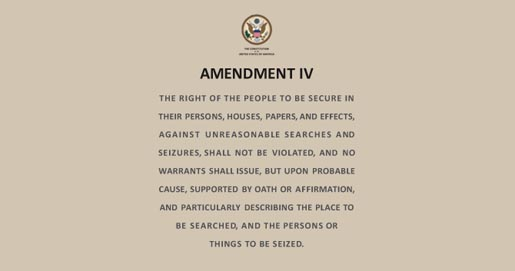 4th Amendment Lingerie