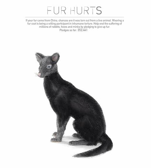 PETA Fur Hurts site Fox