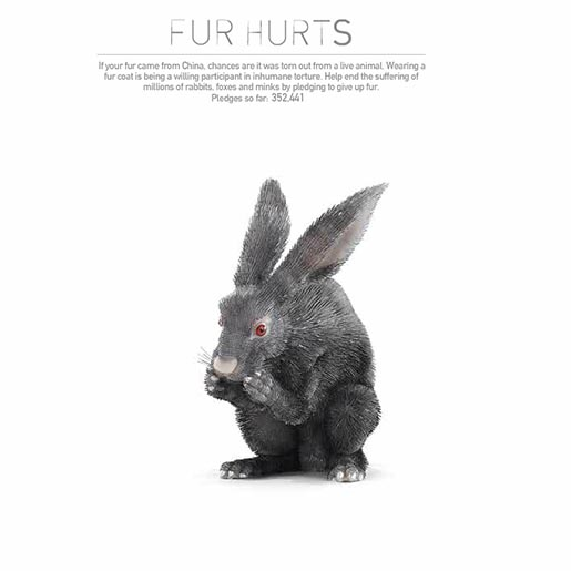 PETA Fur Hurts site Rabbit