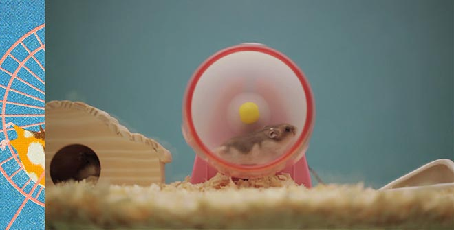 Panasonic Life is Electric - Hamster
