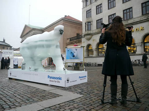 Ice Bear in Copenhagen
