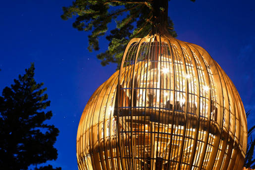 Yellow Treehouse Restaurant at night