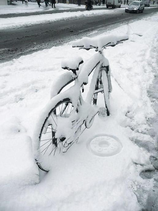 Polo Snow Stamp on bicycle