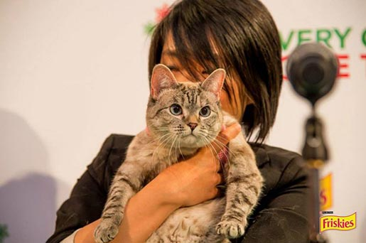 Purina Friskies Press Conference
