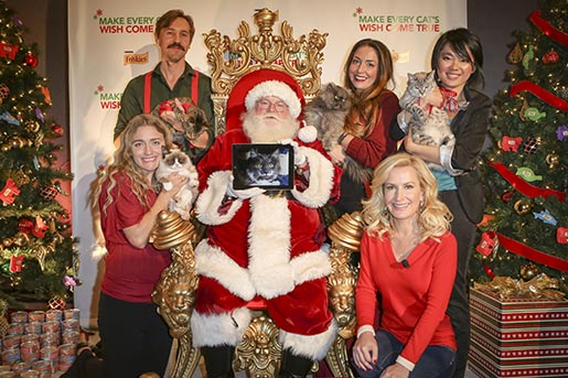 Purina Friskies Press Conference with five cats Angela and Santa