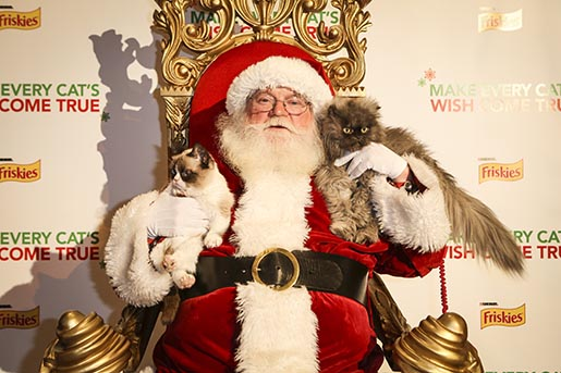 Purina Friskies Press Conference Santa with Grumpy and Meow