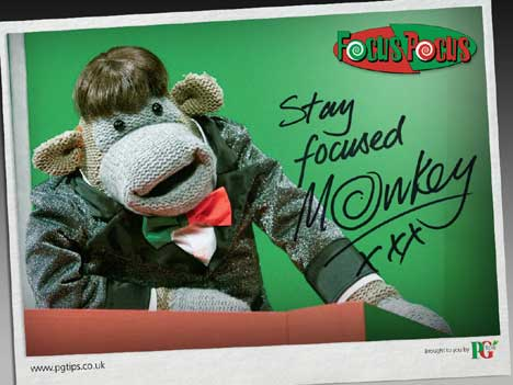 Monkey says Stay Focused on free downloadable poster from PG Tips quiz show