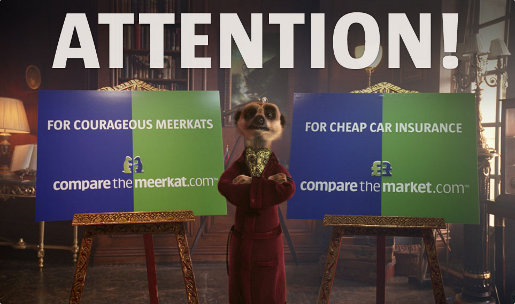 Compare the Meerkat site